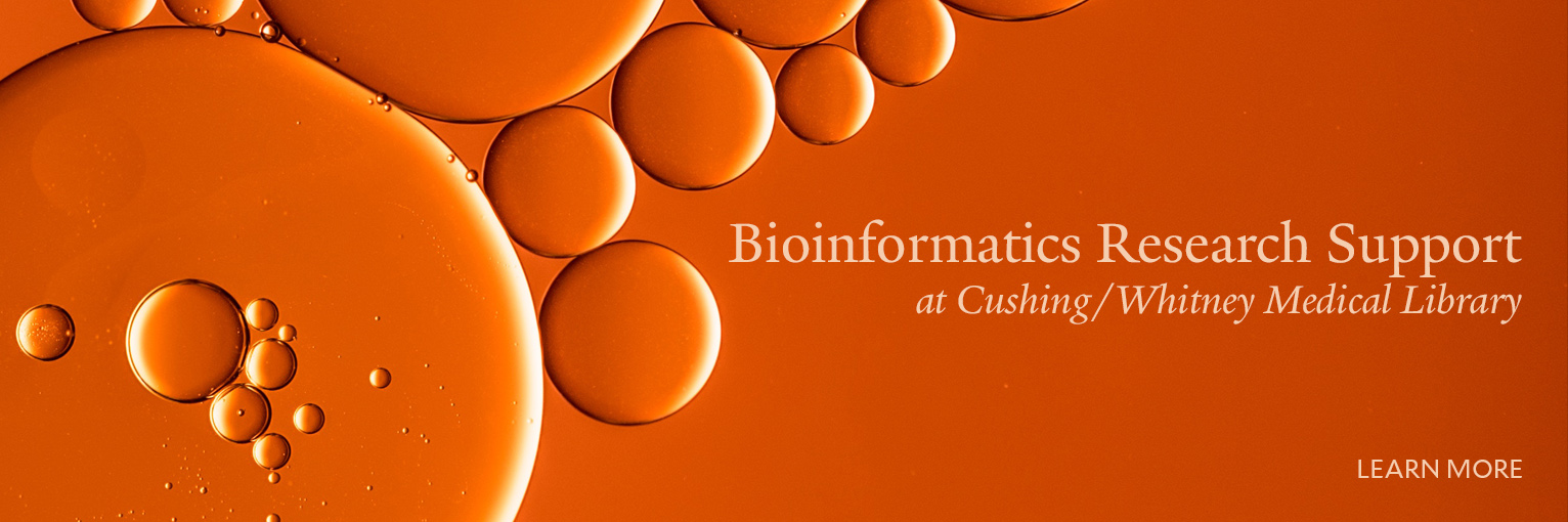 Bioinformatics Research Support