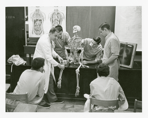 Prof. Crelin using a skeleton to demonstrate anatomy to students