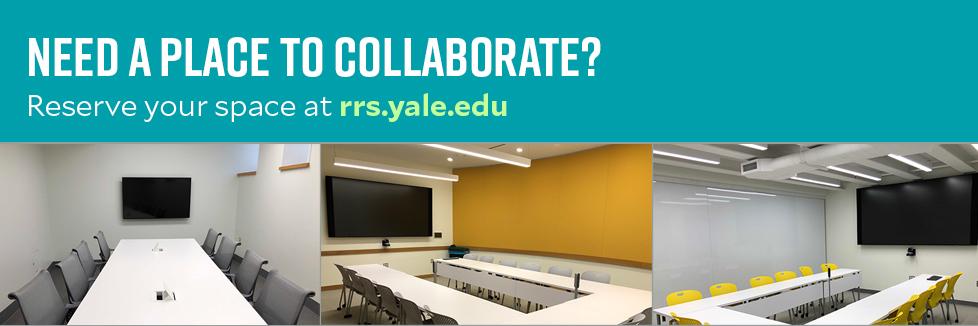 Collaborate in our study spaces
