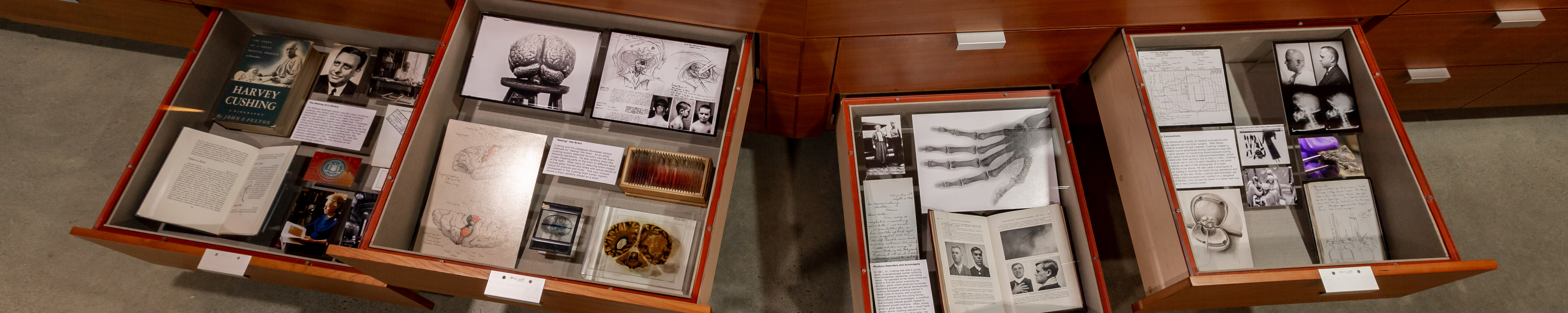 Discovery Drawers