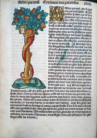 从Gaerde DER suntheit生命之树(1492)