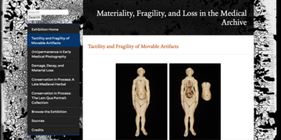Image of the online exhibition homepage